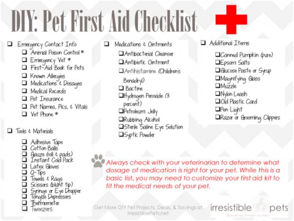 DIY Pet First Aid List